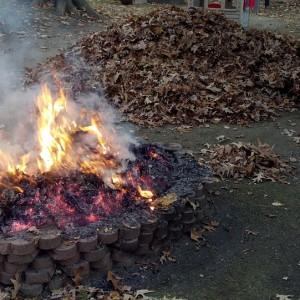 Verbot des Verbrennens pflanzlicher Gartenabfälle innerhalb von Ortsteilen